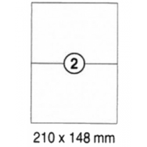 xel-lent 2 labels/sheet, straight corners, 210 x 148 mm, 100sheets/pack