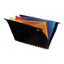 FIS PVC Hanging File with 5 Color indexed Folder, F/S, (210x330mm)