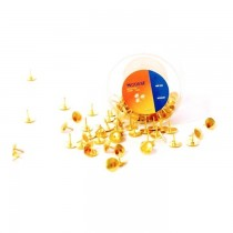 Modest Golden Color Thumb Tacks 100/pack